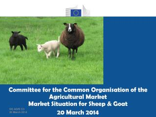 EU import of sheep & goat meat and live animals Trade figures (Comext)