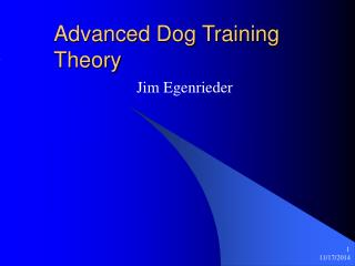 Advanced Dog Training Theory
