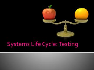 Systems Life Cycle: Testing