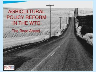 AGRICULTURAL POLICY REFORM IN THE WTO
