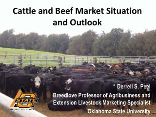 Cattle and Beef Market Situation and Outlook