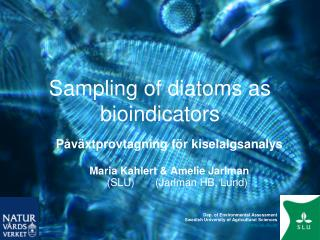 Sampling of diatoms as bioindicators