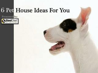 6 Pet House Ideas For You