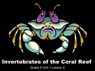 Invertebrates of the Coral Reef