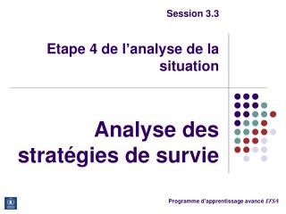 Session 3.3 Etape 4 de l'analyse de la situation Analyse des stratégies de survie