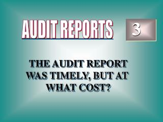 THE AUDIT REPORT WAS TIMELY, BUT AT  WHAT COST?