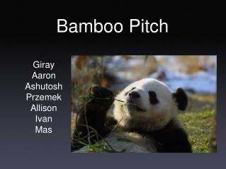 Bamboo Pitch