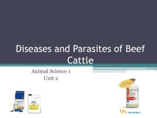Diseases and Parasites of Beef Cattle