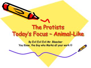 The Protists Today's Focus – Animal-Like