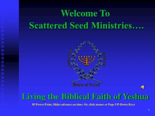 Scattered Seed Ministries….