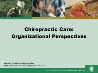 Chiropractic Care: Organizational Perspectives
