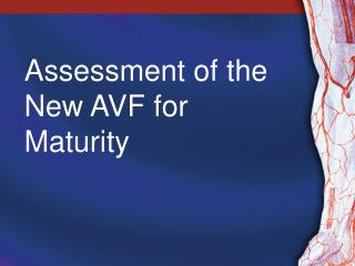 Assessment of the New AVF for Maturity
