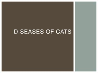 DISEASES OF CATS