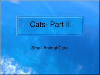 Cats- Part II