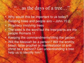 """…as the days of a tree…"""