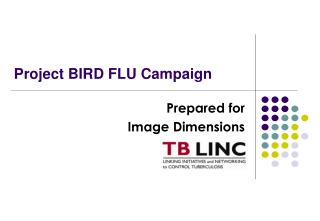 Project BIRD FLU Campaign
