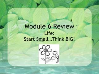 Module 6 Review Life:   Start Small…Think BIG!