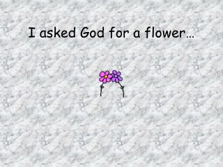 I asked God for a flower…