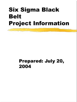 Six Sigma Black Belt Project Information