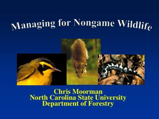 Chris Moorman North Carolina State University Department of Forestry
