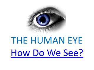 THE HUMAN EYE How Do We See?