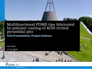 Multifunctional PDMS tips fabricated by polymer casting of KOH etched pyramidal  p its