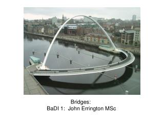 Bridges: BaDI 1: John Errington MSc