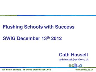 Flushing Schools with Success SWIG December 13 th  2012