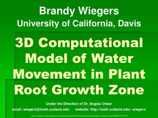 3D Computational Model of Water Movement in Plant Root Growth Zone