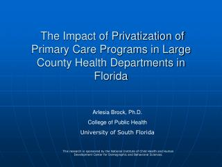 The Impact of Privatization of Primary Care Programs in Large County Health Departments in Florida