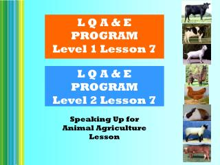 L Q A & E PROGRAM Level 2 Lesson 7