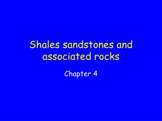 Shales sandstones and associated rocks
