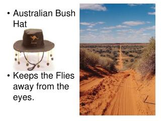 Australian Bush Hat Keeps the Flies away from the eyes.