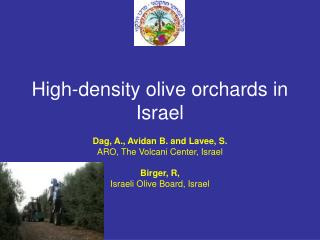 High-density olive orchards in Israel