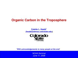Organic Carbon in the Troposphere