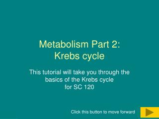 Metabolism Part 2:  Krebs cycle