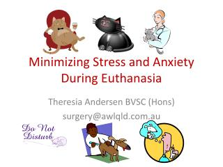 Minimizing Stress and Anxiety During Euthanasia