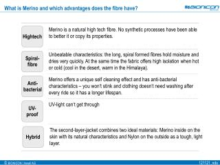 What is Merino and which advantages does the fibre have?