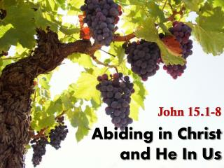Abiding in Christ and He In Us