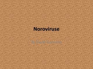 Noroviruse