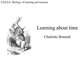 C82LEA  Biology of learning and memory