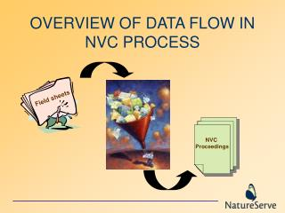 OVERVIEW OF DATA FLOW IN NVC PROCESS