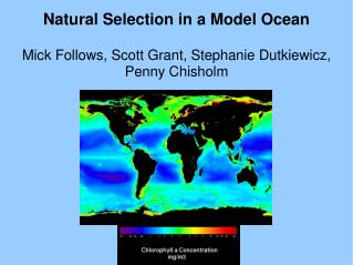 Natural Selection in a Model Ocean Mick Follows, Scott Grant, Stephanie Dutkiewicz, Penny Chisholm
