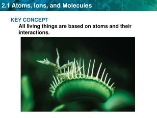 KEY CONCEPT All living things are based on atoms and their interactions.