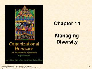 Chapter 14 Managing  Diversity
