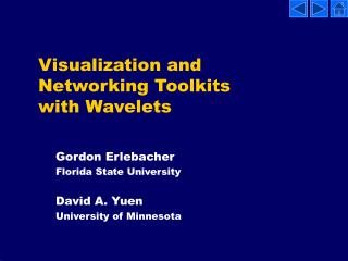 Visualization and Networking Toolkits with Wavelets