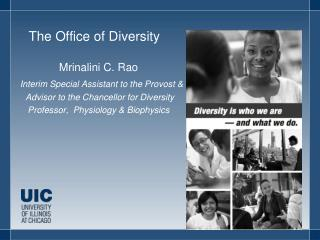The  Office of Diversity