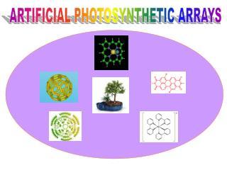 ARTIFICIAL PHOTOSYNTHETIC ARRAYS