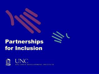 Partnerships for Inclusion