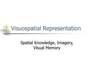 Visuospatial Representation